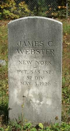 WEBSTER (WWI), JAMES C - Lewis County, New York | JAMES C WEBSTER (WWI) - New York Gravestone Photos