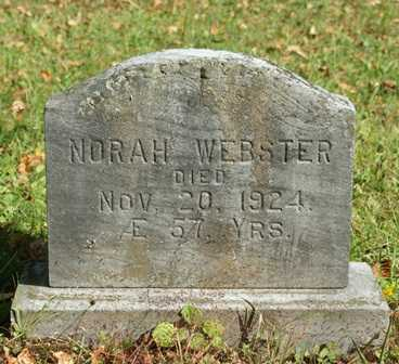 WEBSTER, NORAH - Lewis County, New York | NORAH WEBSTER - New York Gravestone Photos