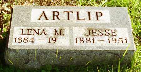 ARTLIP, LENA M. - Livingston County, New York | LENA M. ARTLIP - New York Gravestone Photos