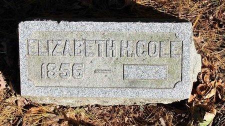 COLE, ELIZABETH - Livingston County, New York | ELIZABETH COLE - New York Gravestone Photos