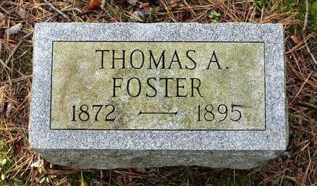 FOSTER, THOMAS A. - Livingston County, New York | THOMAS A. FOSTER - New York Gravestone Photos