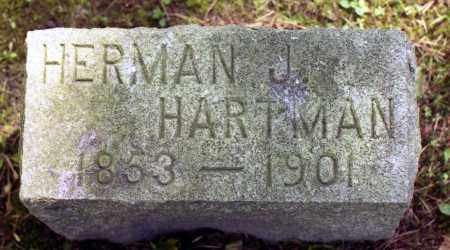 HARTMAN, HERMAN J. - Livingston County, New York | HERMAN J. HARTMAN - New York Gravestone Photos