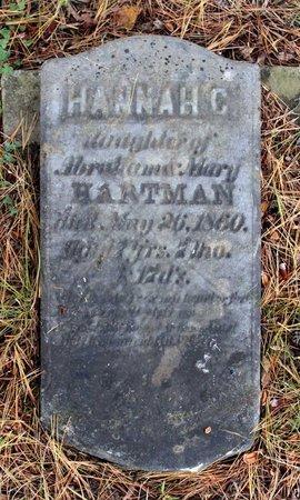 HARTMAN, HANNAH C. - Livingston County, New York | HANNAH C. HARTMAN - New York Gravestone Photos