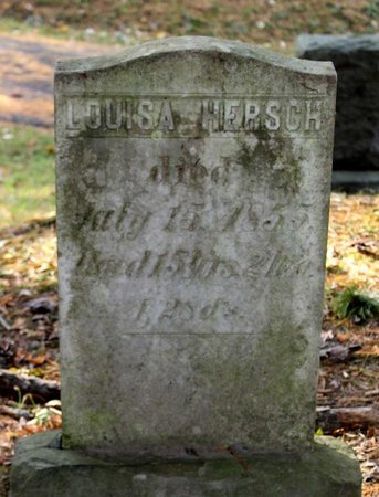 HERSCH, LOUISA - Livingston County, New York | LOUISA HERSCH - New York Gravestone Photos