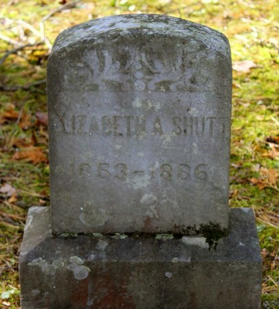 SHUTT, ELIZABETH A. - Livingston County, New York | ELIZABETH A. SHUTT - New York Gravestone Photos