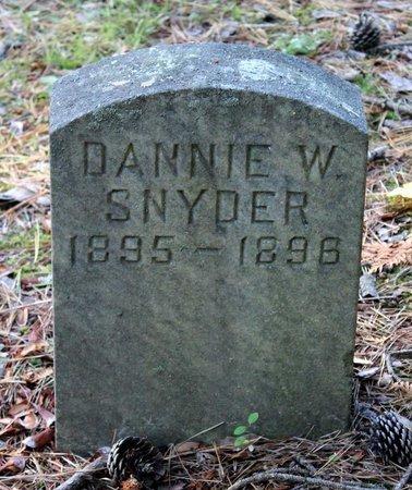 SNYDER, DANNIE W. - Livingston County, New York | DANNIE W. SNYDER - New York Gravestone Photos