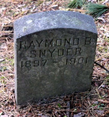 SNYDER, RAYMOND B. - Livingston County, New York   RAYMOND B. SNYDER - New York Gravestone Photos