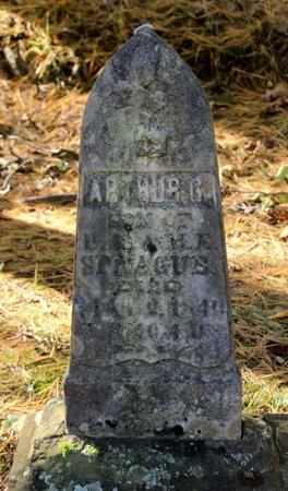SPRAGUE, ARTHUR G. - Livingston County, New York | ARTHUR G. SPRAGUE - New York Gravestone Photos