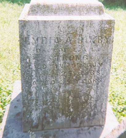 STRONG BIXBY, LYDIA ANN - Madison County, New York | LYDIA ANN STRONG BIXBY - New York Gravestone Photos