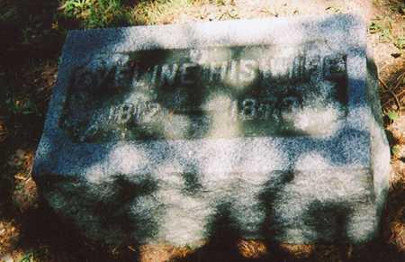 BIXBY HODGE, EVELINE AFFA - Madison County, New York | EVELINE AFFA BIXBY HODGE - New York Gravestone Photos