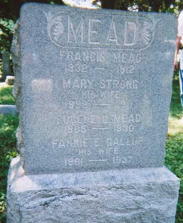 MEAD, FRANCIS - Madison County, New York | FRANCIS MEAD - New York Gravestone Photos