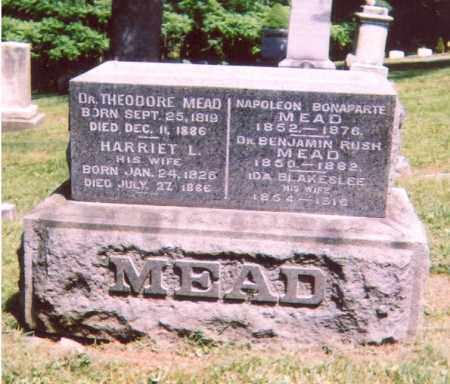 MEAD, THEODORE - Madison County, New York   THEODORE MEAD - New York Gravestone Photos