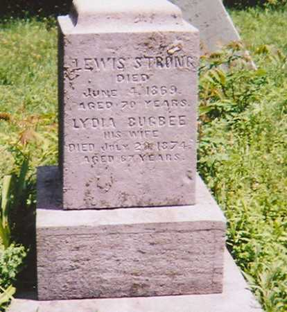 STRONG, LYDIA - Madison County, New York | LYDIA STRONG - New York Gravestone Photos