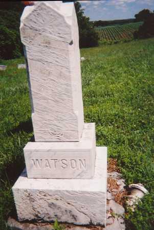 WATSON, ELVIRA - Madison County, New York | ELVIRA WATSON - New York Gravestone Photos