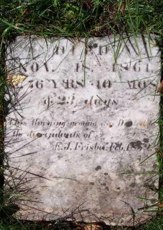 FRISBEE, EDWARD JACKSON - Monroe County, New York | EDWARD JACKSON FRISBEE - New York Gravestone Photos