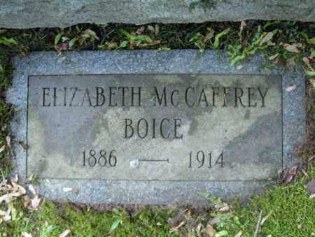 BOICE, ELIZABETH - Montgomery County, New York | ELIZABETH BOICE - New York Gravestone Photos