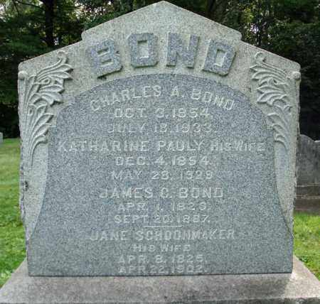 BOND, JAMES C - Montgomery County, New York | JAMES C BOND - New York Gravestone Photos