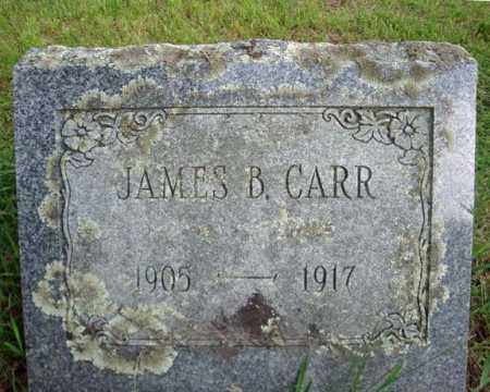 CARR, JAMES B - Montgomery County, New York | JAMES B CARR - New York Gravestone Photos