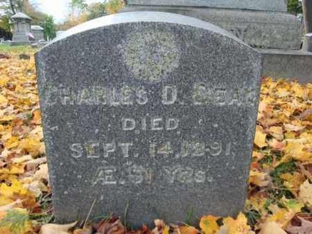 DEAN, CHARLES D - Montgomery County, New York | CHARLES D DEAN - New York Gravestone Photos