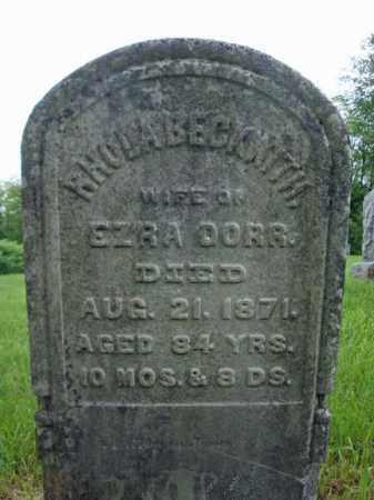 DORR, RHODA - Montgomery County, New York | RHODA DORR - New York Gravestone Photos