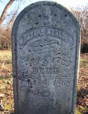 NELLIS, ROBERT - Montgomery County, New York | ROBERT NELLIS - New York Gravestone Photos