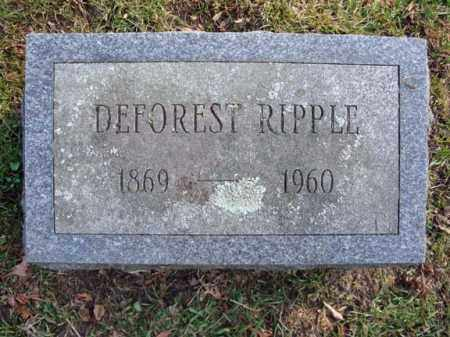 RIPPLE, DEFOREST - Montgomery County, New York | DEFOREST RIPPLE - New York Gravestone Photos