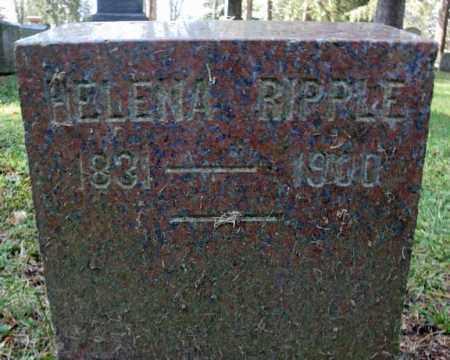 RIPPLE, HELENA - Montgomery County, New York | HELENA RIPPLE - New York Gravestone Photos