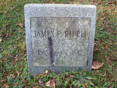 RIPPLE, JAMES P - Montgomery County, New York | JAMES P RIPPLE - New York Gravestone Photos