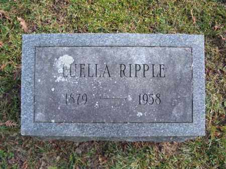 RIPPLE, LUELLA - Montgomery County, New York | LUELLA RIPPLE - New York Gravestone Photos