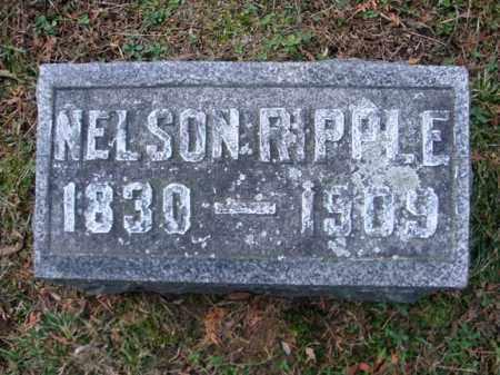 RIPPLE, NELSON - Montgomery County, New York | NELSON RIPPLE - New York Gravestone Photos