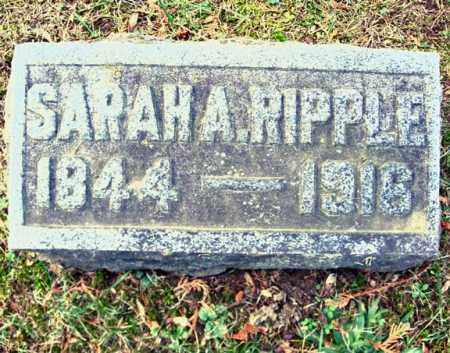 RIPPLE, SARAH A - Montgomery County, New York | SARAH A RIPPLE - New York Gravestone Photos