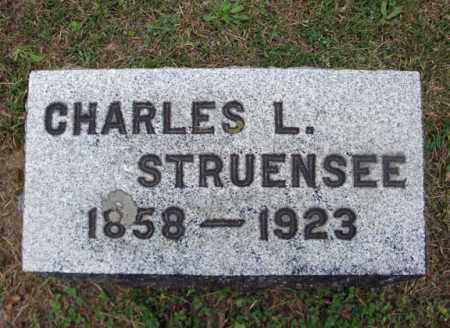 STRUENSEE, CHARLES L - Montgomery County, New York | CHARLES L STRUENSEE - New York Gravestone Photos