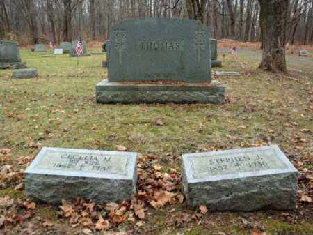 THOMAS, STEPHEN J - Montgomery County, New York | STEPHEN J THOMAS - New York Gravestone Photos