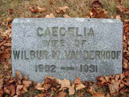 VAN DERHOOF, CAECELIA - Montgomery County, New York | CAECELIA VAN DERHOOF - New York Gravestone Photos