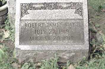 WATT, ROBERT - Niagara County, New York | ROBERT WATT - New York Gravestone Photos