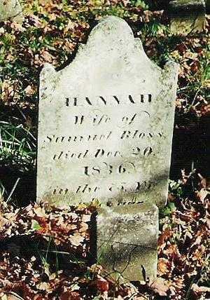 BLOSS, HANNAH - Oneida County, New York | HANNAH BLOSS - New York Gravestone Photos