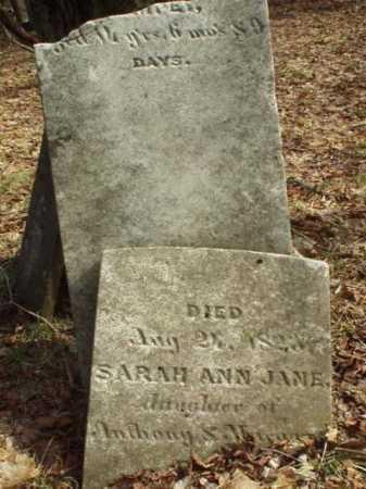 EMPEY, SARAH ANN JANE - Oneida County, New York   SARAH ANN JANE EMPEY - New York Gravestone Photos