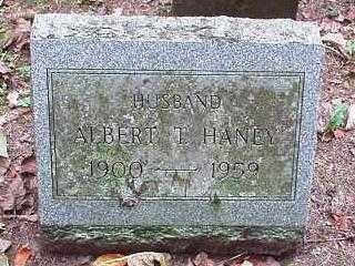 HANEY, ALBERT T. - Oneida County, New York | ALBERT T. HANEY - New York Gravestone Photos