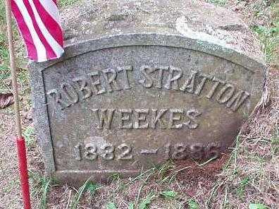 WEEKES, ROBERT STRATTON - Oneida County, New York | ROBERT STRATTON WEEKES - New York Gravestone Photos