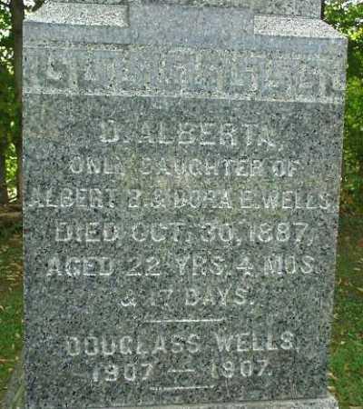 WELLS, DOUGLASS - Oneida County, New York | DOUGLASS WELLS - New York Gravestone Photos