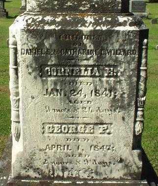WILLARD, GEORGE F. - Oneida County, New York | GEORGE F. WILLARD - New York Gravestone Photos
