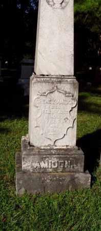 AMIDON, CHENEY - Onondaga County, New York   CHENEY AMIDON - New York Gravestone Photos