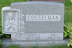 COSSELMAN, ANN - Onondaga County, New York | ANN COSSELMAN - New York Gravestone Photos