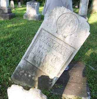 HOLBROOK, ADOLPHAS - Onondaga County, New York | ADOLPHAS HOLBROOK - New York Gravestone Photos
