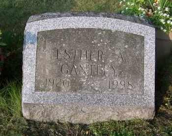 PITCHER, ESTHER A - Oswego County, New York | ESTHER A PITCHER - New York Gravestone Photos