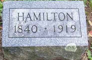 PITCHER, HAMILTON - Oswego County, New York | HAMILTON PITCHER - New York Gravestone Photos