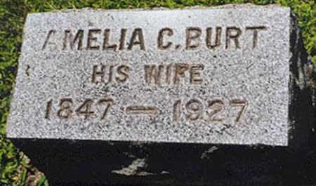 BURT TANNER, AMELIA C. - Oswego County, New York | AMELIA C. BURT TANNER - New York Gravestone Photos