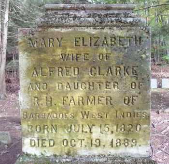 CLARKE, MARY ELIZABETH - Otsego County, New York | MARY ELIZABETH CLARKE - New York Gravestone Photos