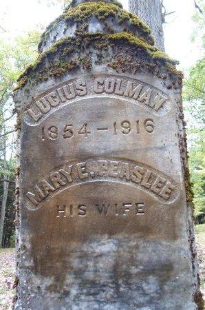 COLEMAN, MARY E - Otsego County, New York | MARY E COLEMAN - New York Gravestone Photos