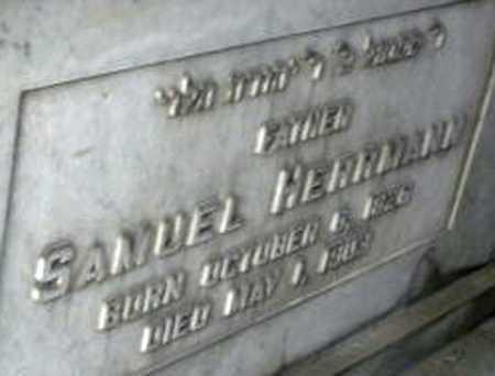 HERRMANN, SAMUEL - Queens County, New York | SAMUEL HERRMANN - New York Gravestone Photos